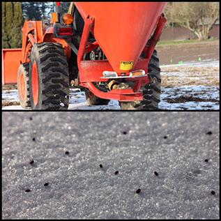 frost seeding 2018